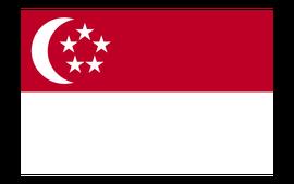 新加坡旅游签证(专家审核材料+签证专家1对1办签指导+全国办理+免邮材料)