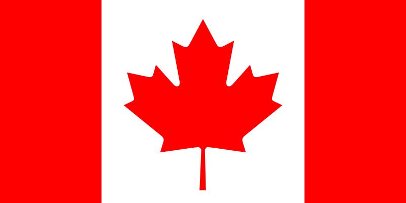 加拿大旅游签证(专家审核材料+签证专家1对1办签指导+全国办理+免邮材料)